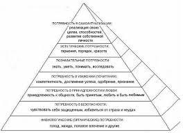 Пирамида потребностей А Маслоу Портал профессионального  Пирамида потребностей А Маслоу