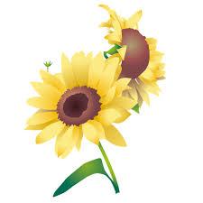 花のイラスト 無料 夏の花