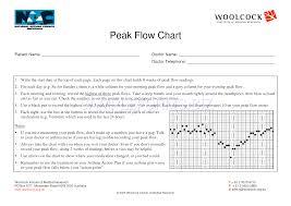 Peak Flow Chart For Adults Pdf Preview Pdf Peak Flow Chart 1 2