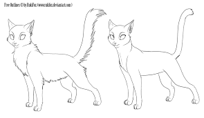 warrior cat drawing outline. Fine Cat How To Draw Anime Cat  Google Search Intended Warrior Cat Drawing Outline R