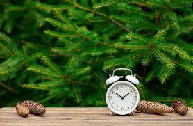 Premium Photo | Vintage alarm clock and teddy bear on wooden table with  spruce branches on background