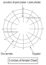 Amsler Chart Amsler Chart Chart Drawings Diagram