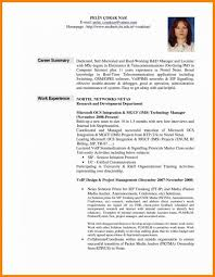 Career Summary Examples For Resume Awesome Resume Professional Summary Sample Freebeautytips