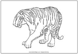 Small Picture Tiger Colouring Pages