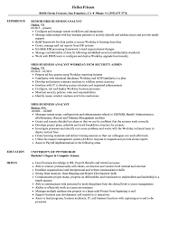 Hris Analyst Sample Resume Hris Business Analyst Resume Samples Velvet Jobs 17