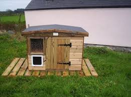 outdoor insulated cat house plans beautiful 19 new how to build a outdoor cat house plans