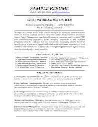 Professional Resume Objectives Resume Objective Examples For It Professionals Krida 11