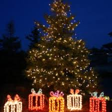 lighting outdoor trees. Lighted Yard Displays Of Presents Under A Exterior Holiday Christmas Tree Lighting Outdoor Trees
