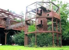 outdoor cat tree house plans design houses furniture creative 1 outdoor cat tree