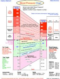What Is The Blood Pressure Chart Blood Pressure Tracking Chart Medical Form Fill Online