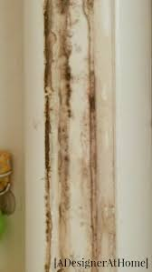 how to clean shower doors and track f27x in perfect designing home inspiration with how to clean shower doors and track