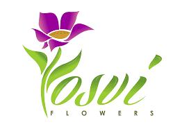 <b>Hello Fall</b> by BloomNation™ in Miami, FL | Yosvi
