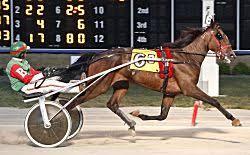 Ohio Fair champions crowned at Hollywood Dayton Raceway - Harness Racing  Newsroom - USTA - USTROTTING