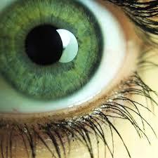 <b>Green eyes</b> | GMUND