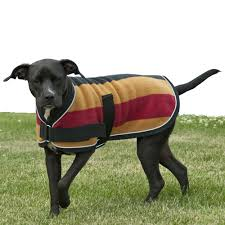 dog blankets coats insulated and fleece dog coats