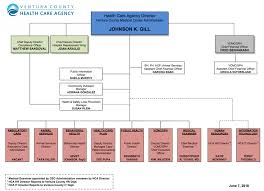 Organizational Chart Enchanting Organization Chart