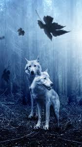Download 750x1334 wallpaper wolf ...