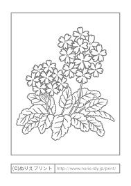 サクラソウ主線グレー春の花無料塗り絵イラストぬりえプリント