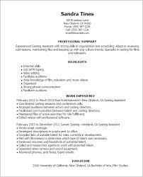 Skills Resume Template Mesmerizing Media Entertainment Templates As Creative Resume Templates Film