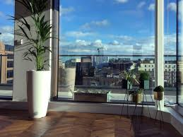 stripeu0027s request of their dublin office for plants rental during our onsite consultation at office requests were a fully lush dublin office l14 office