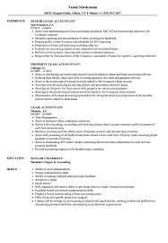 Accountant Resumes Samples Lease Accountant Resume Samples Velvet Jobs