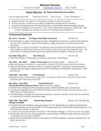 Magnificent Lean Six Sigma Consultant Resume Festooning Examples