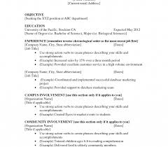 First Job Resume Examples High School Student Resumes For Jobs Template Breathtaking Resume 69