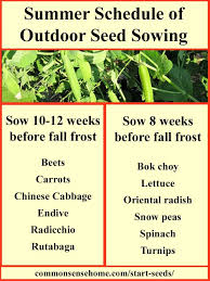 When To Plant Vegetables Chart When Should I Start Seeds Printable Charts For When To