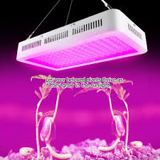 Do Grow Lights Work Led Grow Light 1500w Dual Chips Grow Light Led Full Spectrum Plant Growing Light For Greenhouse Indoor Hydroponic 85 265v Led Lights For Growing 400w