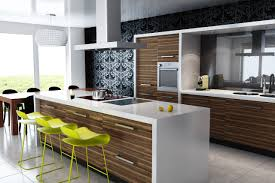 Of Modern Kitchen Amazing Modern Kitchens Of Syracuse For Your Inspiration Pizzafino