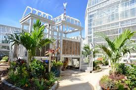 u s botanic garden updated children s garden climbing structure