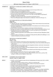 Management Resume Identity Access Management Resume Samples Velvet Jobs 7