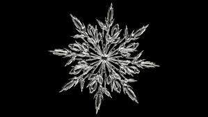 Infor partners with Snowflake -