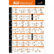 Total Body Gym Workout Chart Newme Fitness Exercise Ball Poster Total Body Workout Your Personal Trainer Fitness Program For Women Swis