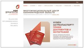 Начальник департамента развития информационных систем компании ЭОС  Изначально дизайн АИС МФЦ ДЕЛО соответствовал брендбуку Мои документы