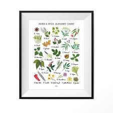 Herb And Spice Wall Chart Herb Spice Alphabet Chart Art Print
