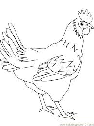 Small Picture Fighter Hen Coloring Page Free Chicks Hens and Roosters