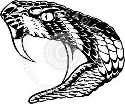 rattlesnake head clip art. Fine Head Cobra Clipart Rattlesnake Head Inside Rattlesnake Head Clip Art R
