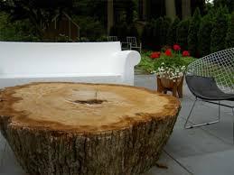 trunk table furniture. wide tree stump coffee table trunk furniture