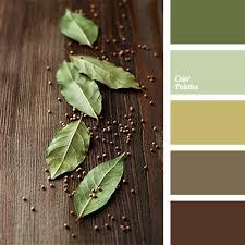 Color Palette #1235