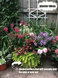 20 ways to use large garden containers bigger can be better when it comes to containers. Planter Ideas 18 Inspiring Design Tips For Gorgeous Garden Containers
