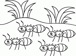 Small Picture The Ant And The Grasshopper Coloring Pages Many Interesting Cliparts