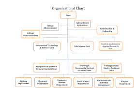 College Of Science About College Organizational Chart