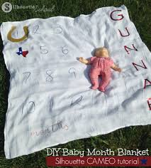 baby month blanket texas silhouette cameo