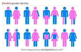 gender identity essay essays on gender dracula essays dracula essays custom essay essays on gender dracula essays dracula essays custom essay