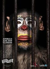 animal cruelty ads. Plain Cruelty Animals Are Not Clowns Inside Animal Cruelty Ads U