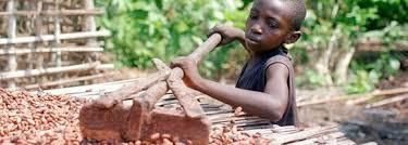 Resultado de imagen de imagenes de explotacion infantil en la recogida del cacao