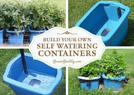 self watering containers are an enclosed growing system that decreases moisture evaporation and offers a consistent