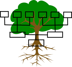 Family Tree Clip Art At Clker Vector Clip Art Online Images Of