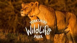 Image result for yorkshire wildlife park